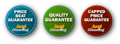 Triple Guarantee Cleaning